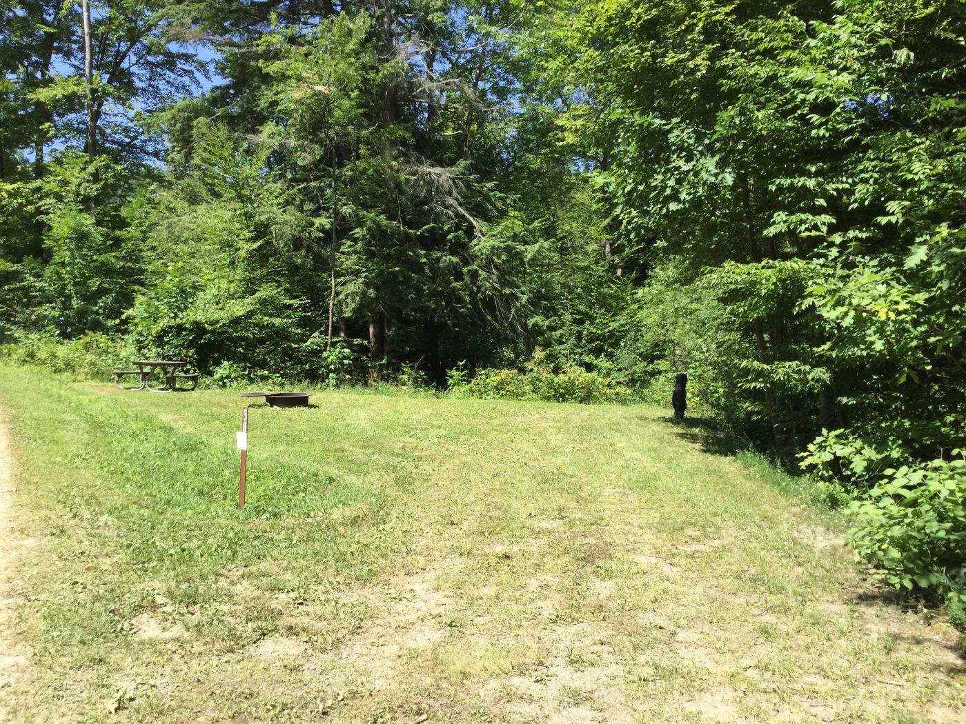 Kiasutha Recreation Area: Site 58
