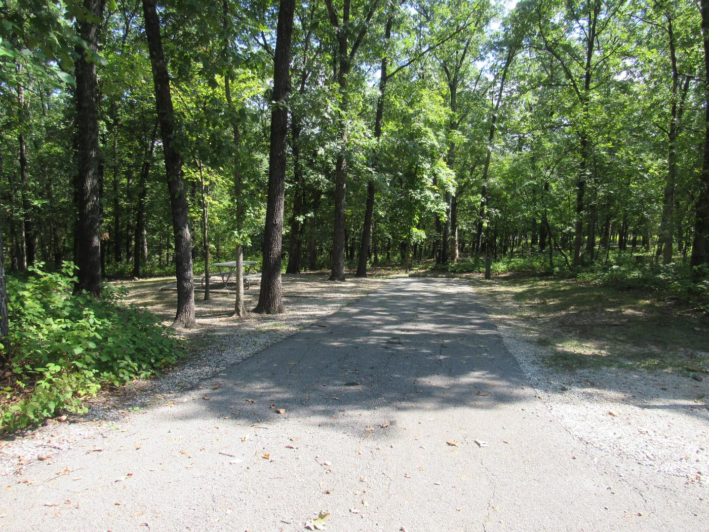 Indian Creek Site # 58
