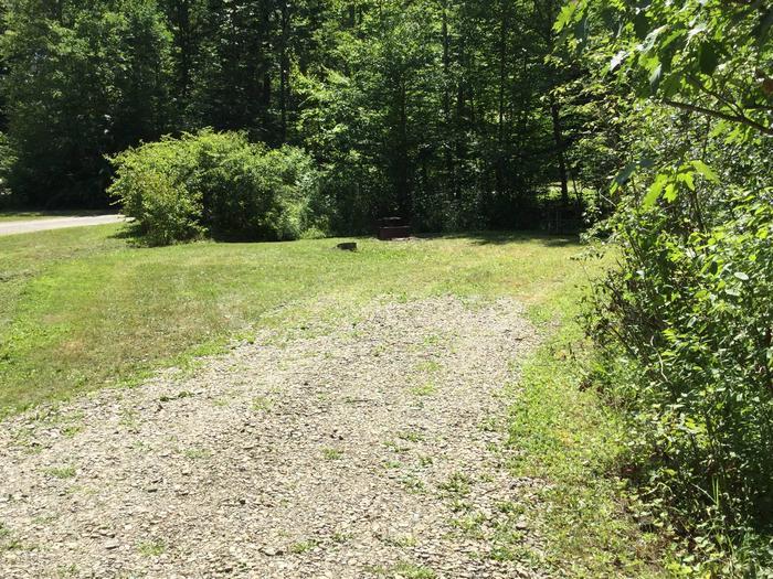 Kiasutha Recreation Area: Site 63