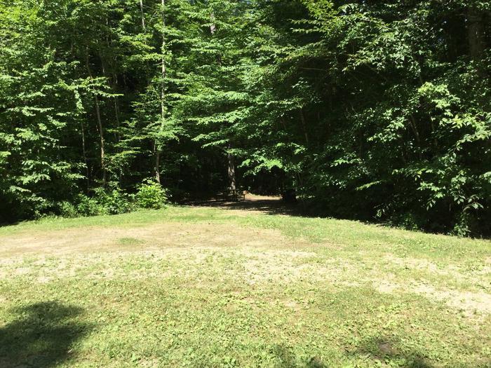 Kiasutha Recreation Area: Site 70