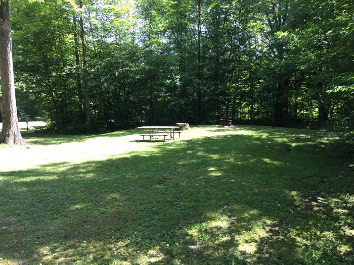 Kiasutha Recreation Area: Site 71