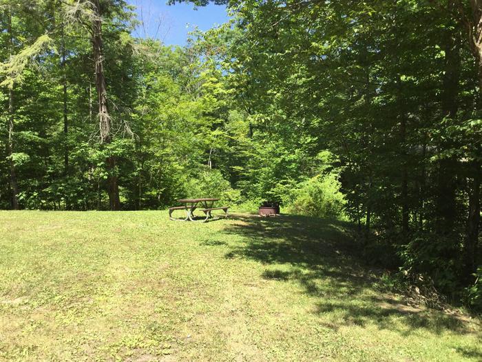 Kiasutha Recreation Area: Site 87