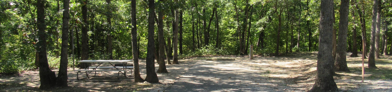 Indian Creek Site # 76