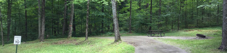Kiasutha Recreation Area: Site 14