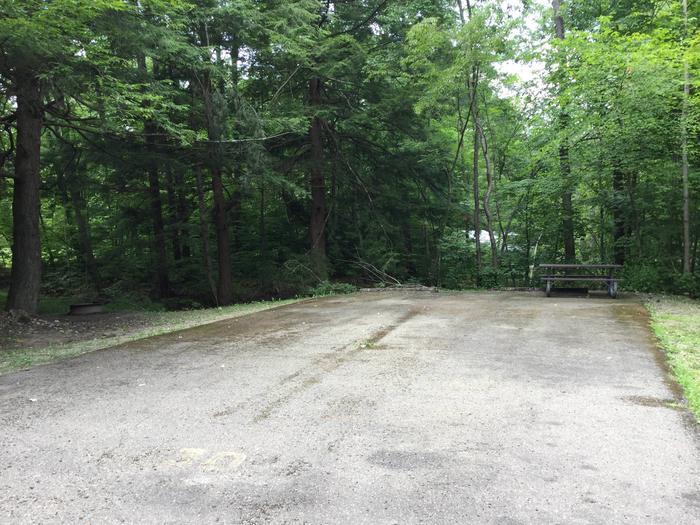 Kiasutha Recreation Area: Site 30