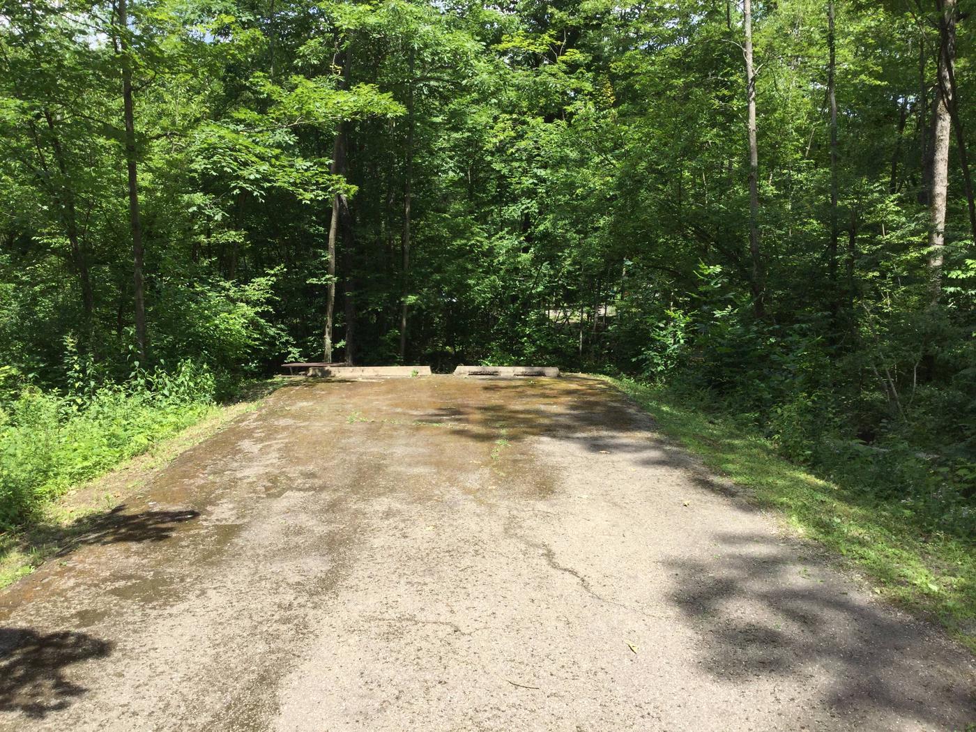 Kiasutha Recreation Area: Site 46
