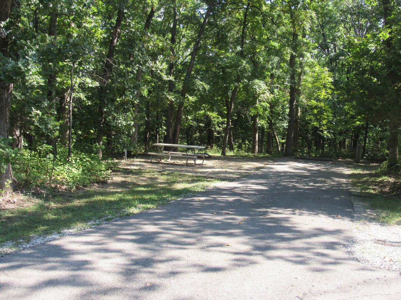 Indian Creek Site # 85