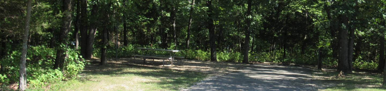 Indian Creek Site # 86
