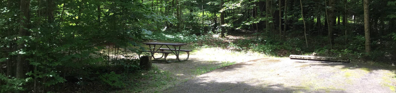 Kiasutha Recreation Area: Site 03