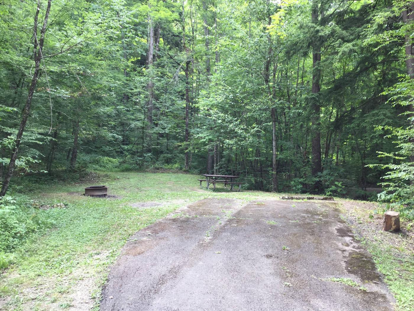 Kiasutha Recreation Area: Site 04