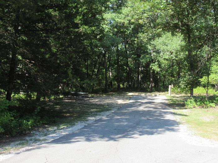 Indian Creek Site # 89