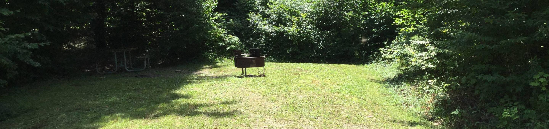 Kiasutha Recreation Area: Site 98