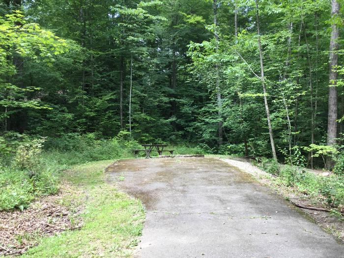 Kiasutha Recreation Area: Site 16