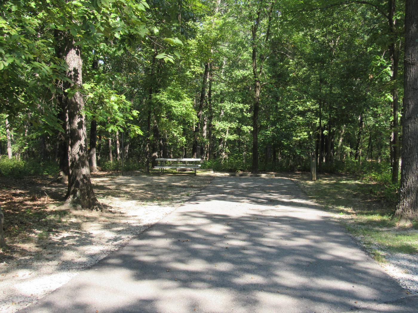 Indian Creek Site # 95