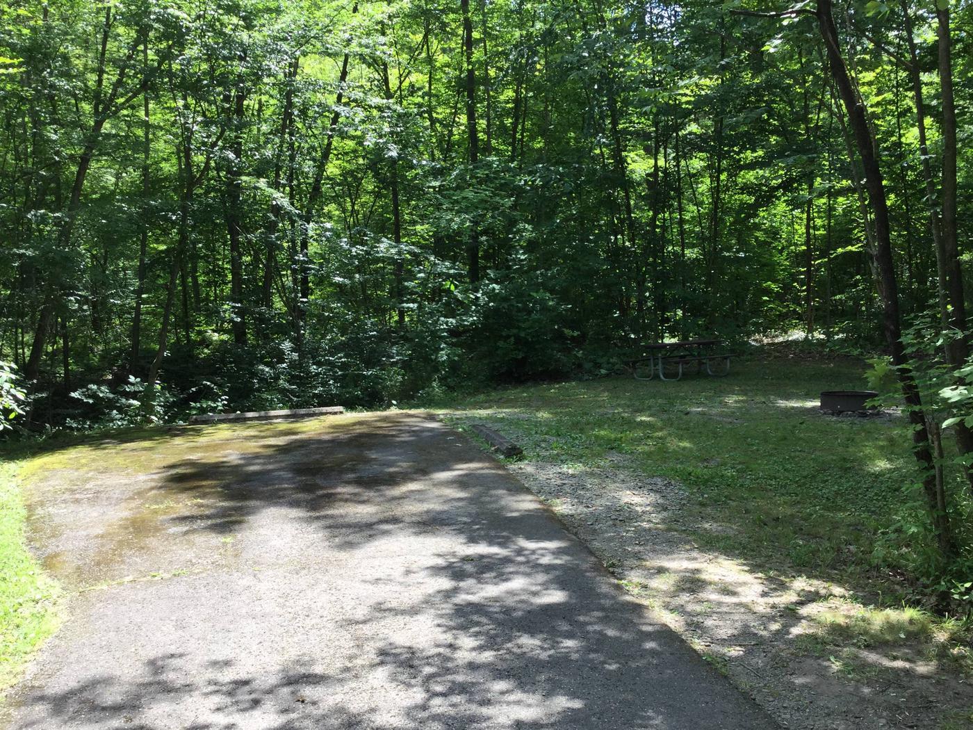 Kiasutha Recreation Area: Site 41