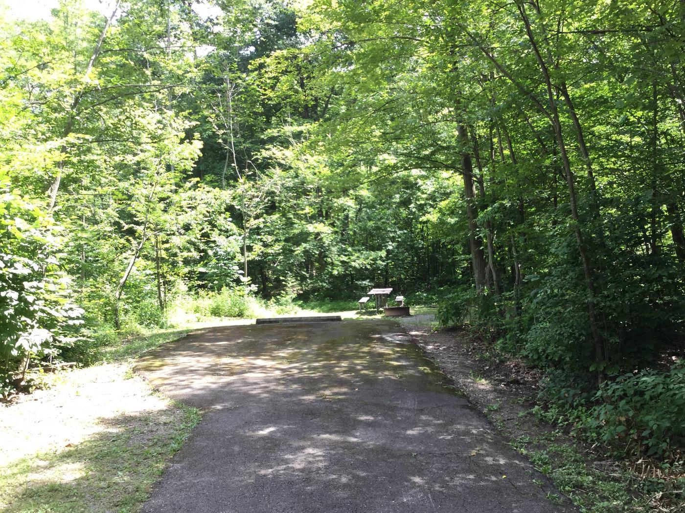 Kiasutha Recreation Area: Site 42