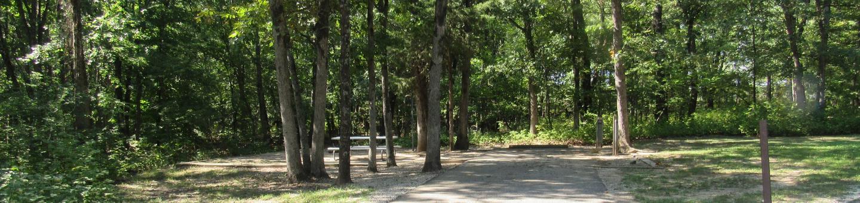 Indian Creek Site # 99