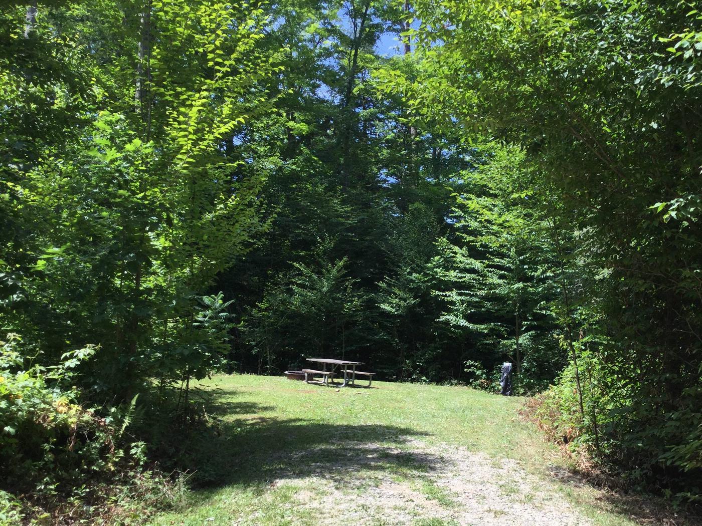 Kiasutha Recreation Area: Site 92