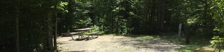 Kiasutha Recreation Area: Site 91