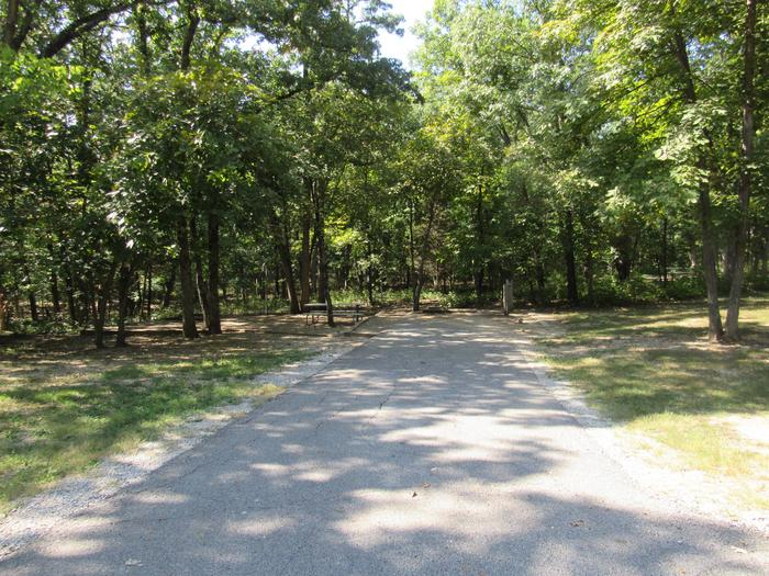 Indian Creek Site # 100