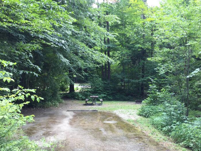 Kiasutha Recreation Area: Site 34