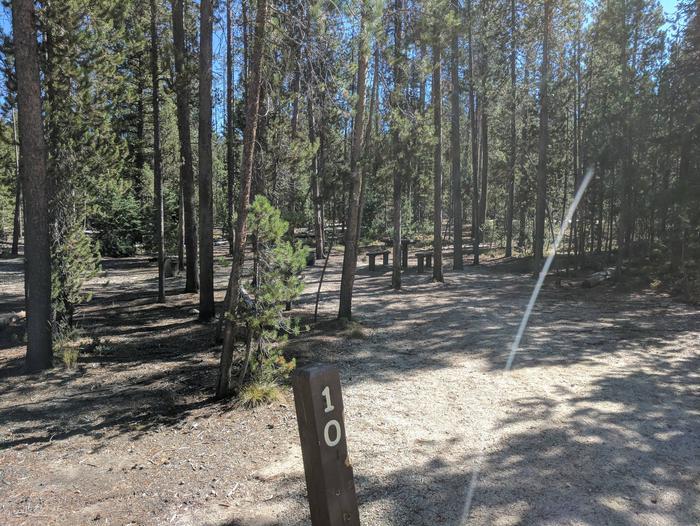 Boundary Creek Campsite #10