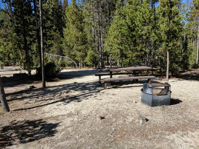 Boundary Creek Campsite #12