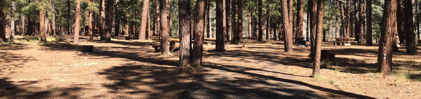 Picnic table, fire pit, and driveway for North Rim Campground, Site 56.