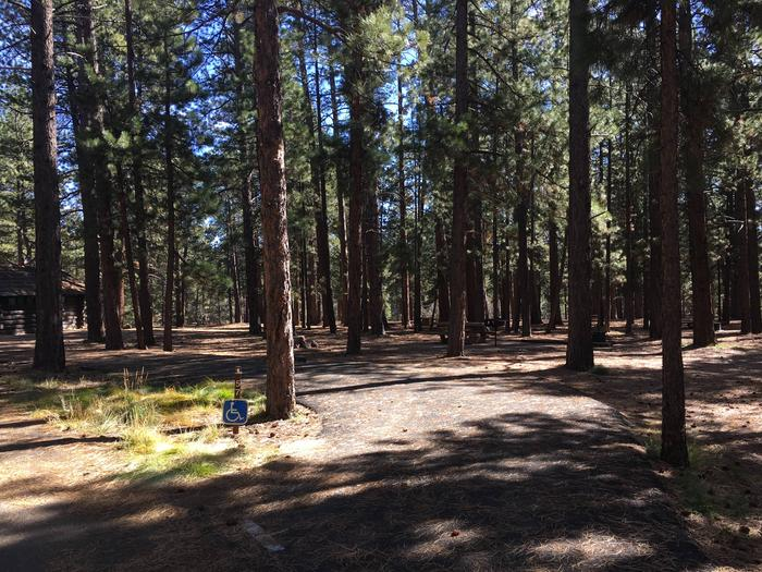 Picnic table, fire pit, and driveway for North Rim Campground, Site 57.