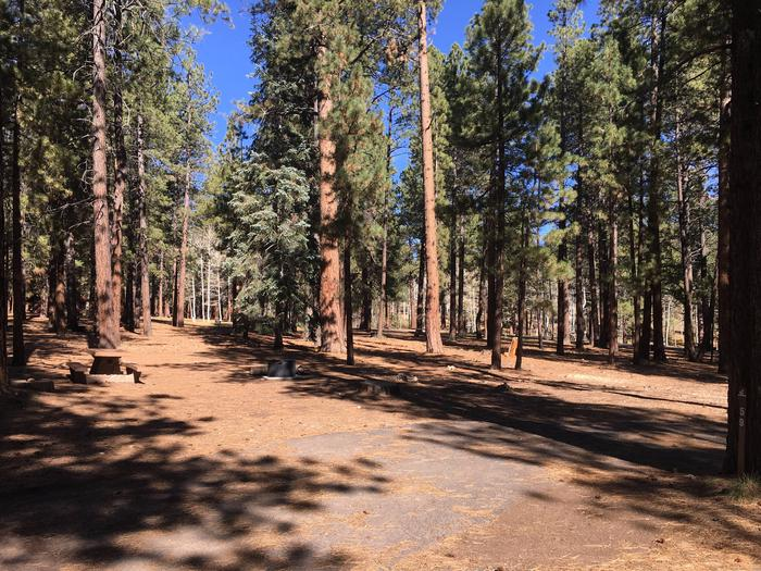 Picnic table, fire pit, and driveway for North Rim Campground, Site 59.