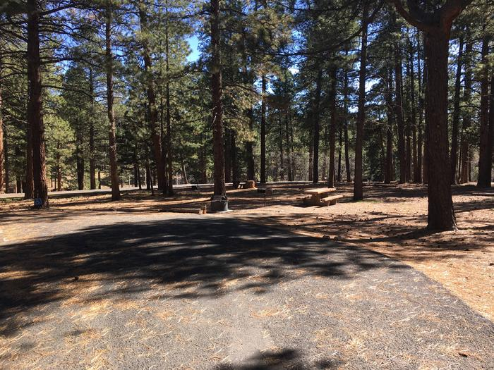 Picnic table, fire pit, and driveway for North Rim Campground, Site 60.