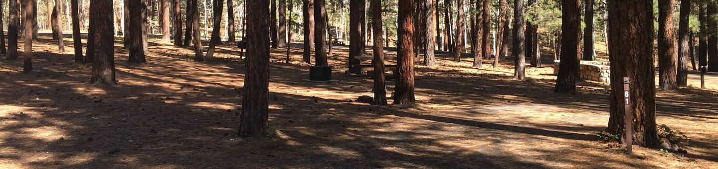 Picnic table, fire pit, and driveway for North Rim Campground, Site 61.