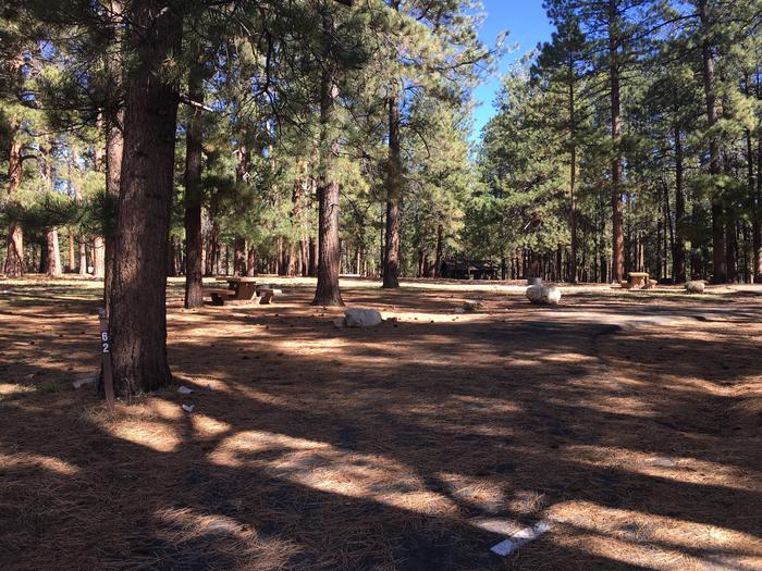 Picnic table, fire pit, and driveway for North Rim Campground, Site 62.
