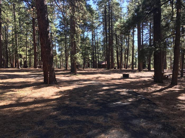 Picnic table, fire pit, and driveway for North Rim Campground, Site 63.