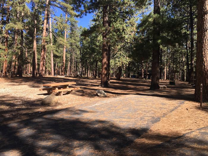 Picnic table, fire pit, and driveway for North Rim Campground, Site 64.