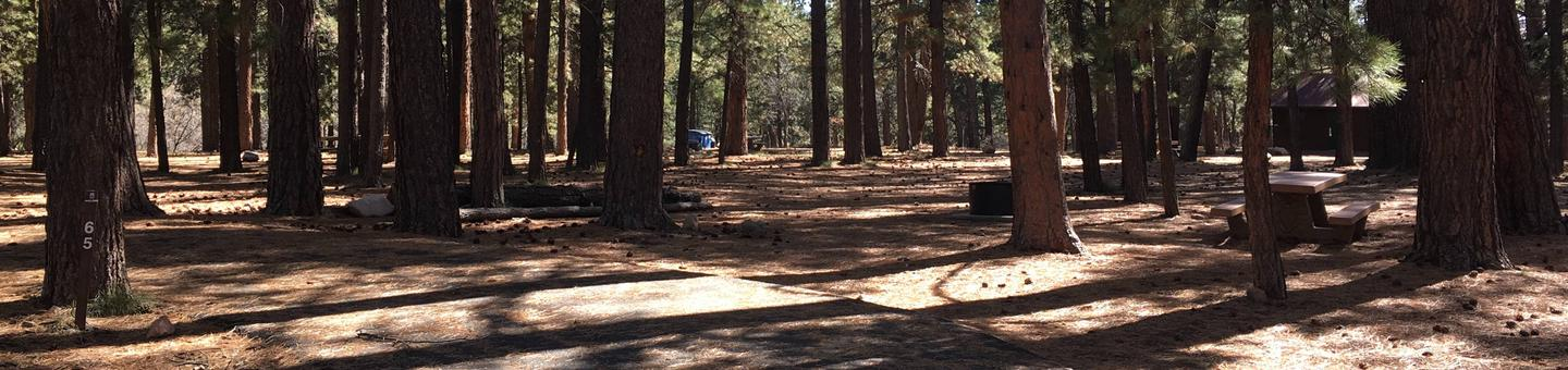 Picnic table, fire pit, and driveway for North Rim Campground, Site 65.