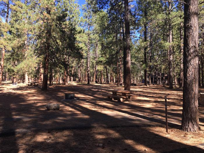 Picnic table, fire pit, and driveway for North Rim Campground, Site 66.