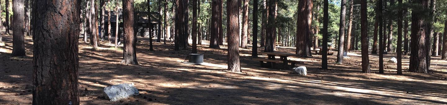 Picnic table, fire pit, and driveway for North Rim Campground, Site 67.