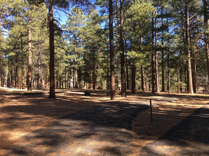 Picnic table, fire pit, and driveway for North Rim Campground, Site 71.