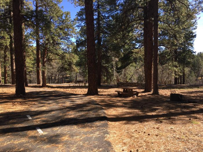 Picnic table, fire pit, and driveway for North Rim Campground, Site 72.