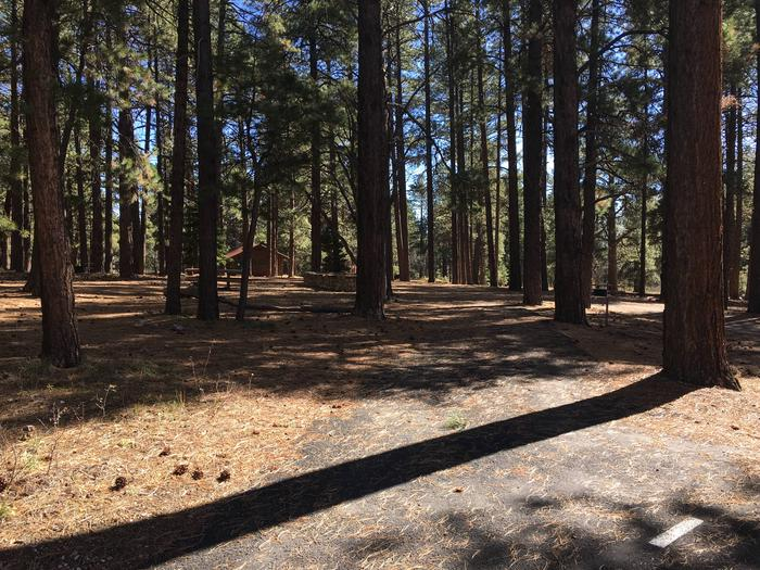 Picnic table, fire pit, and driveway for North Rim Campground, Site 73.