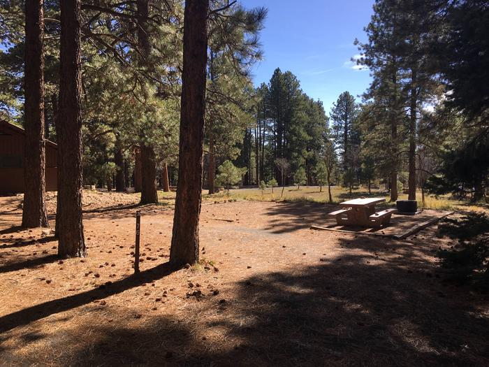 Picnic table, fire pit, and driveway for North Rim Campground, Site 76.