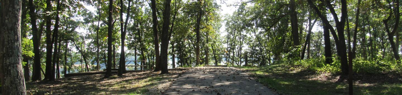 Indian Creek Site # 110