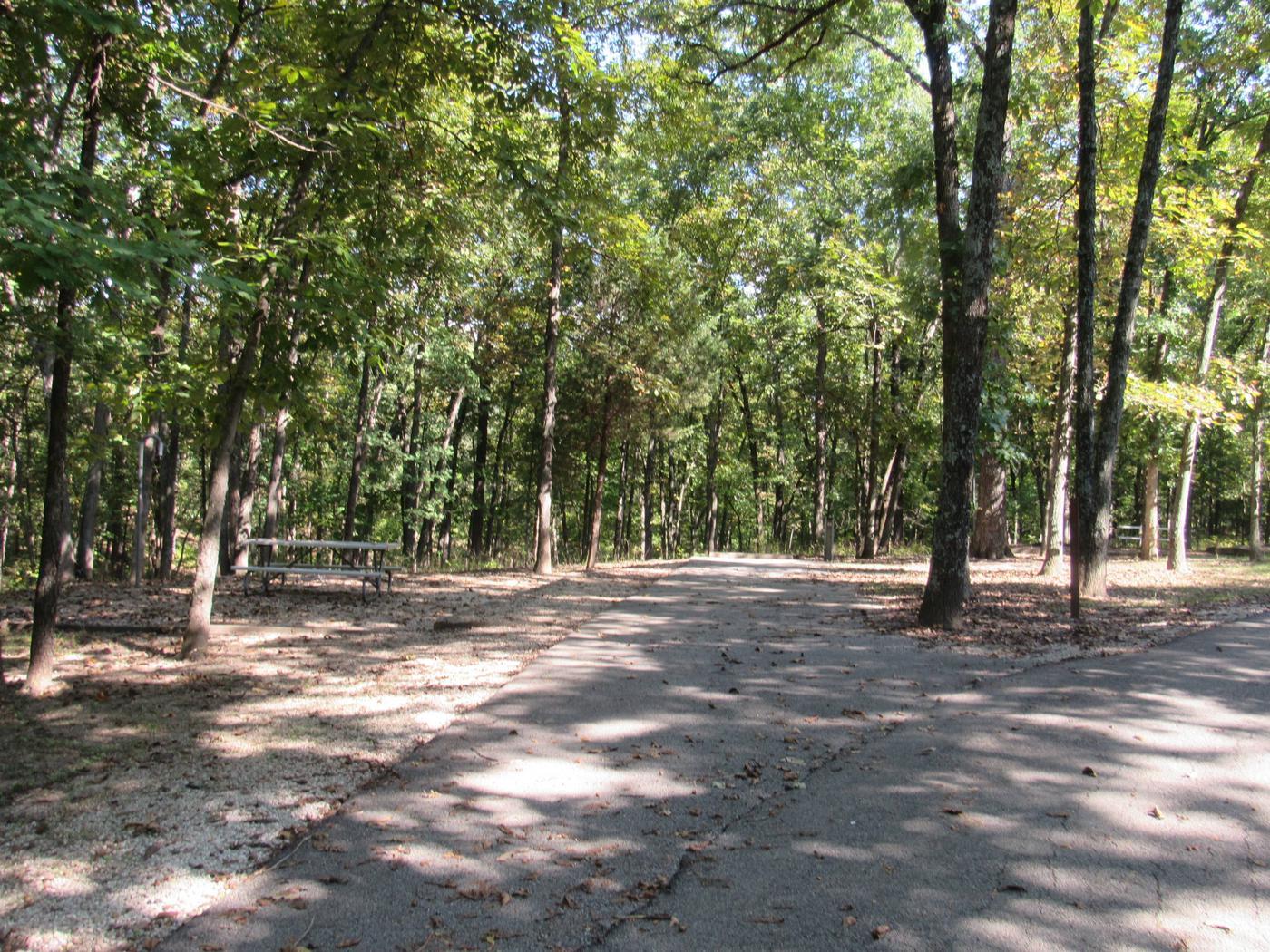 Indian Creek Site # 113