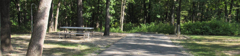 Indian Creek Site # 118