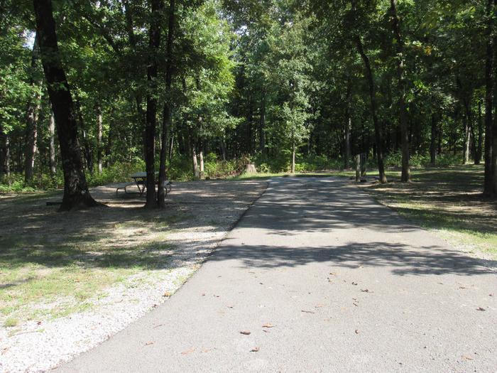 Indian Creek Site # 119