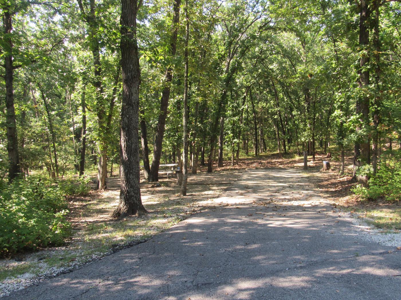 Indian Creek Site # 9