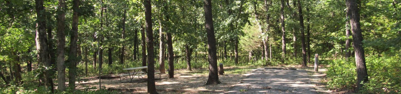 Indian Creek Site # 13