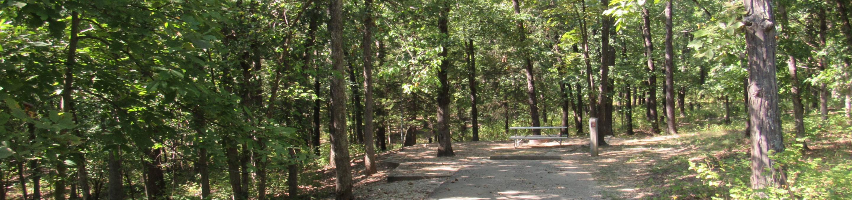 Indian Creek Site # 14