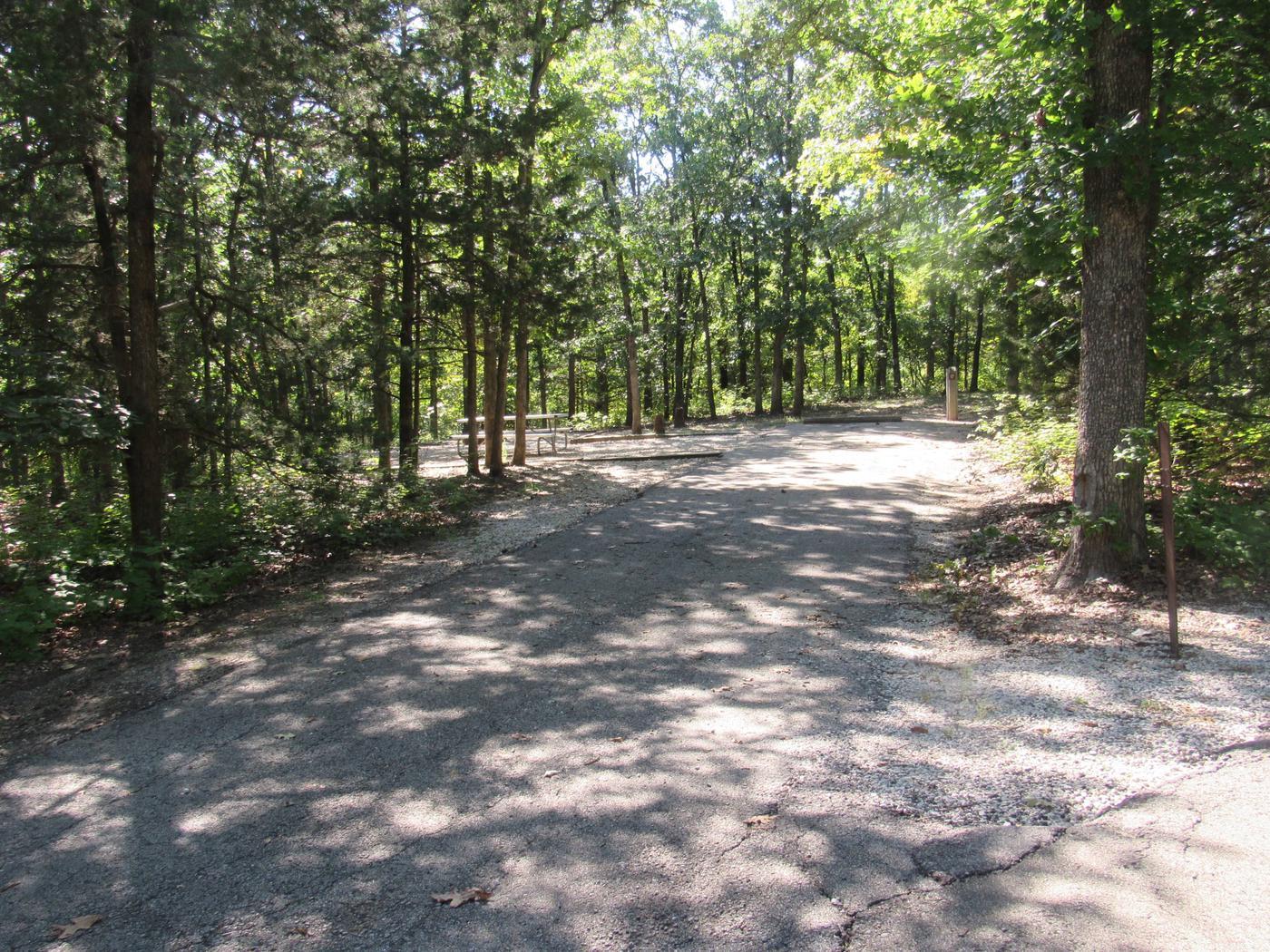 Indian Creek Site # 17